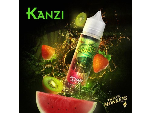 Twelve Monkeys - Kanzi - DampfDampf.de